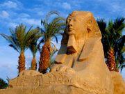 Египет из Краснодара!