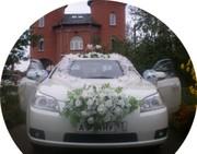 Аренда автомобилей на свадьбу. Кортеж. Украшения. Фотограф. Тамада.